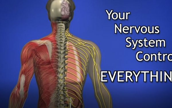 Welcome to our Columbus Chiropractors